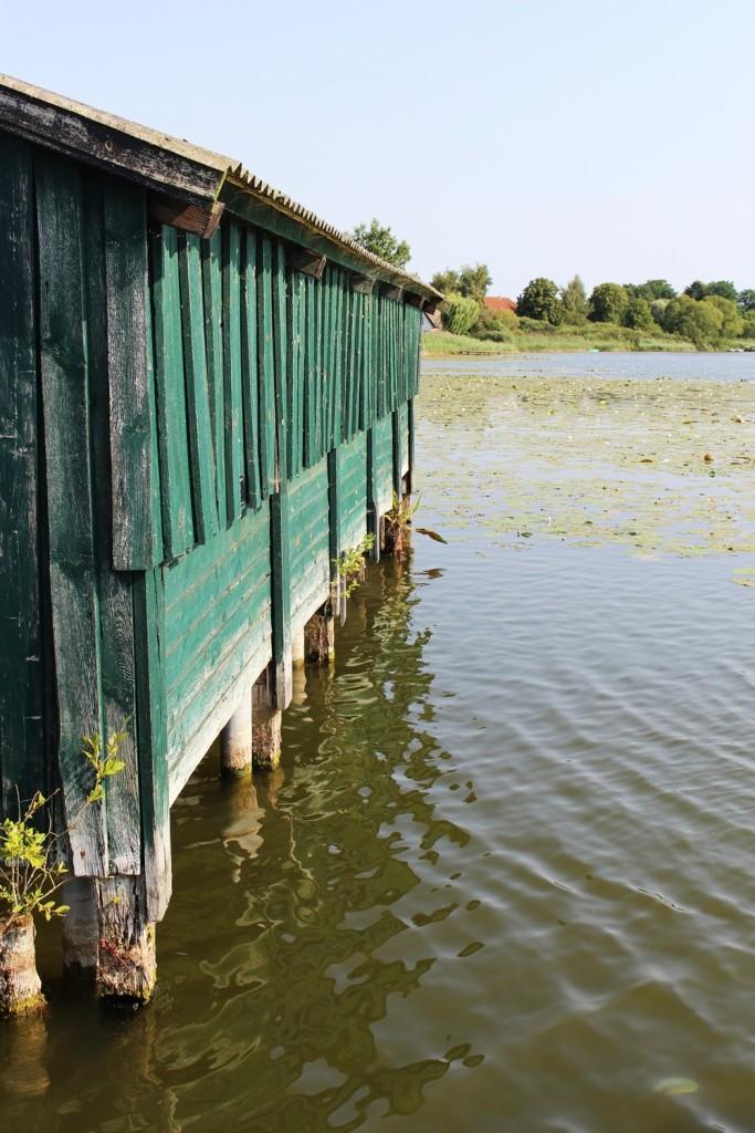 Ostsee-Urlaub-Hohen-Sprenz-August-2015 (51)