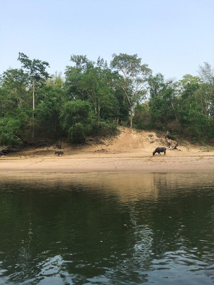 Tag3-Rundreise-River-Kwai-Ayutthaya-Thailand-2016-38