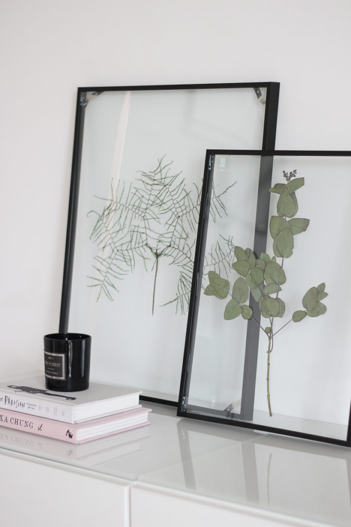 diy floating frame herbarium so bastelt ihr den schwebenden rahmen. Black Bedroom Furniture Sets. Home Design Ideas