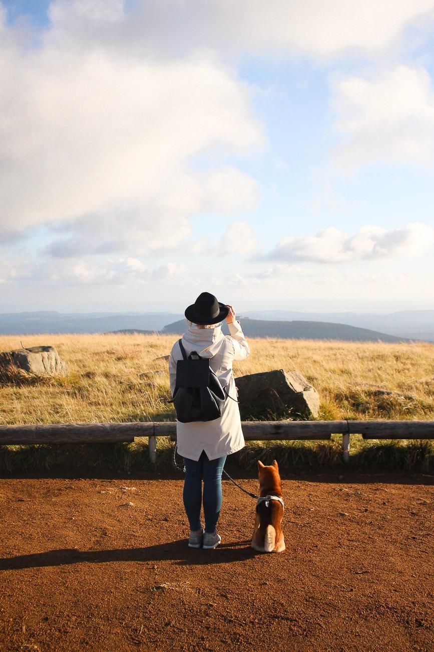 Urlaub im Harz & Wanderung mit Hund auf den Brocken