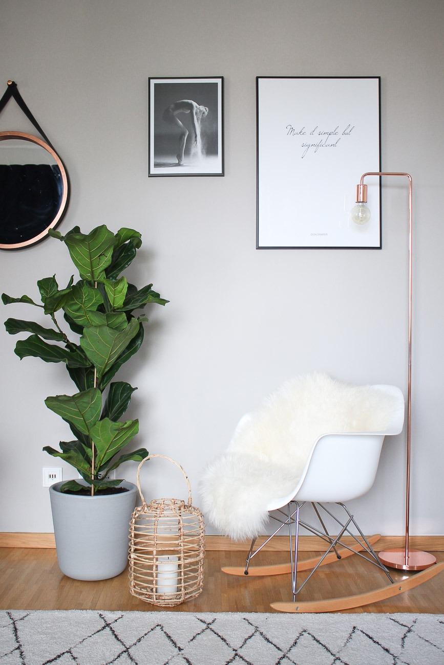 Diese 5 Zimmerpflanzen verwandeln deine Wohnung in eine ...