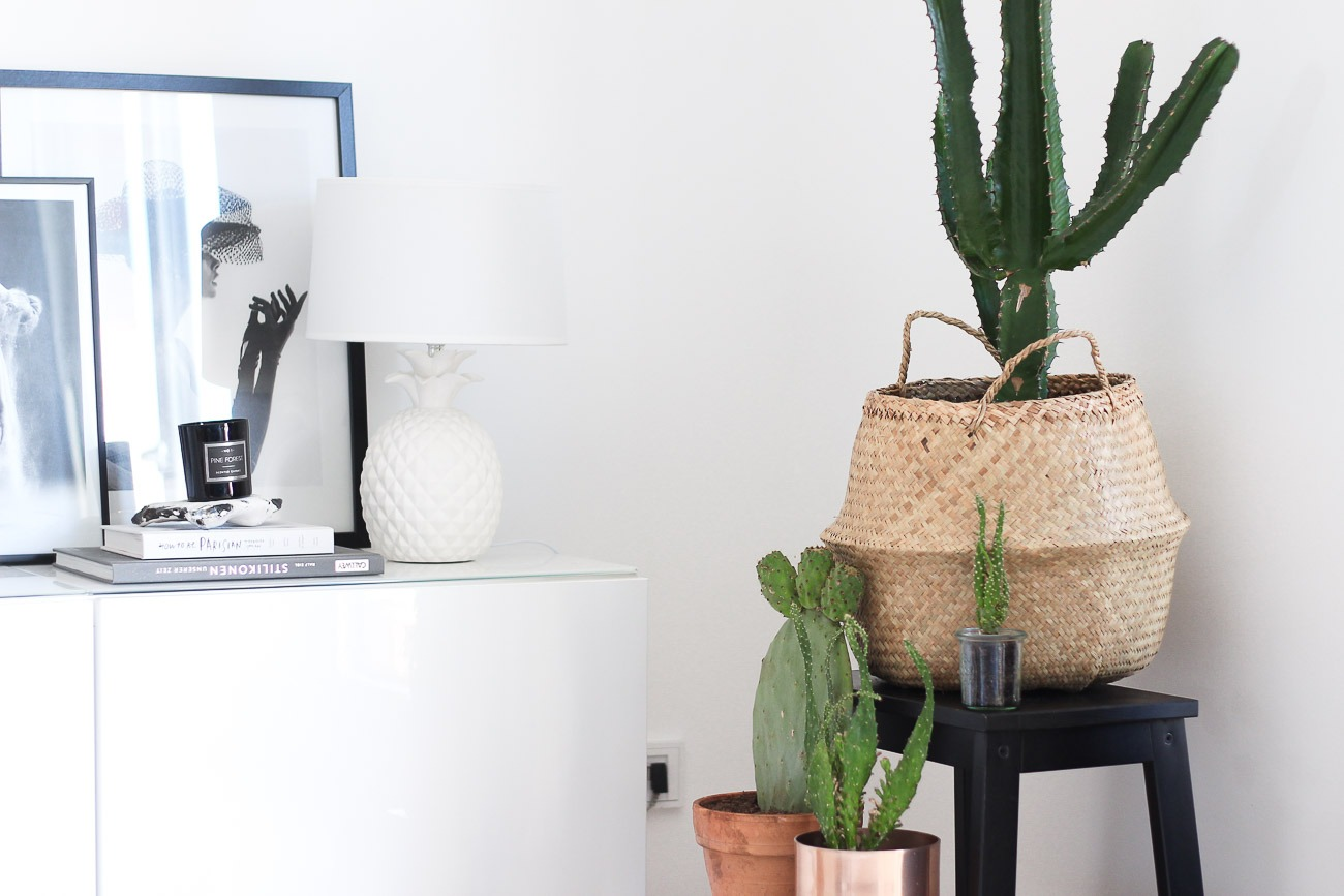 Diese 5 zimmerpflanzen verwandeln deine wohnung in eine for Ikea kunstliche pflanzen