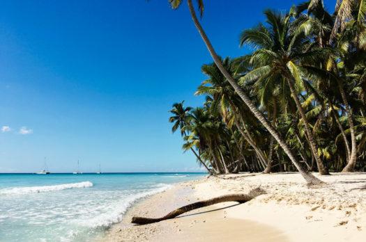 Isla Saona: ein Ausflug ins Paradies