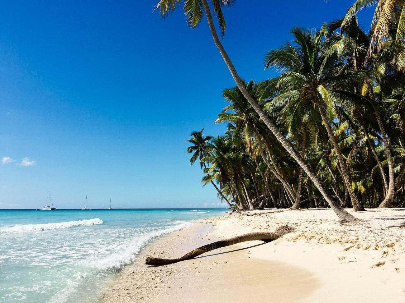 Tropisches Karibikfeeling auf der Isla Saona in der Dominikanischen Republik