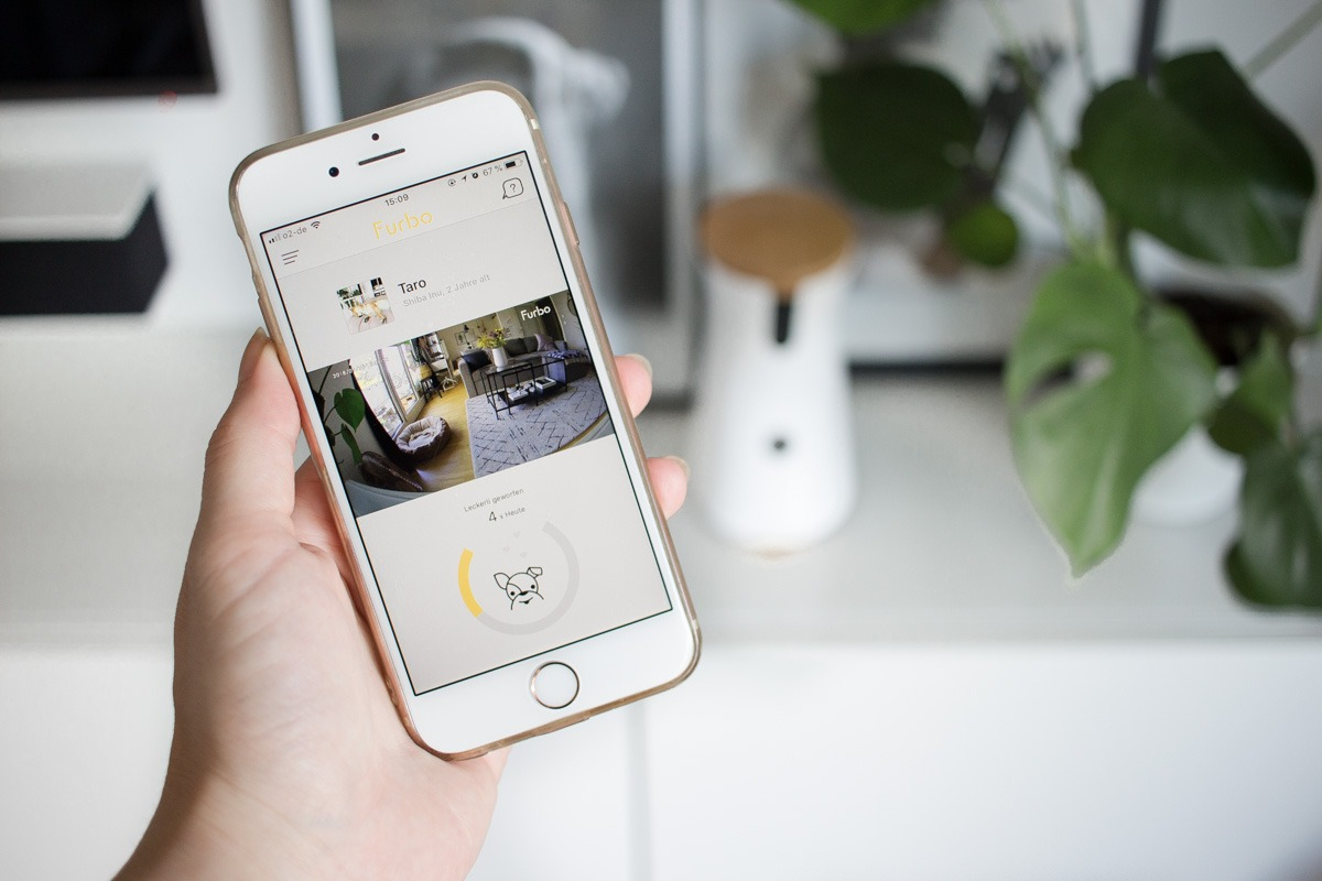 Das Furbo Dashboard innerhalb der passenden App.