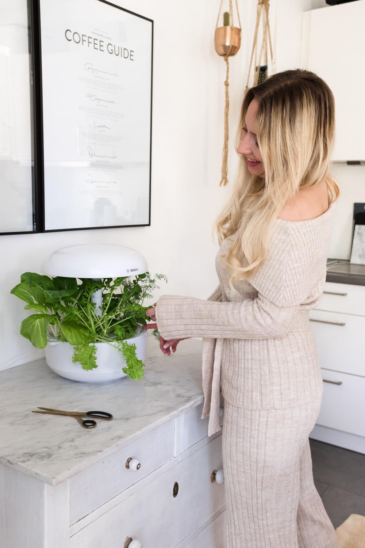 Der beste Teil beim Smart Indoor Gardening? Die Ernte (jedenfalls wenn sie so reich ausfällt!)