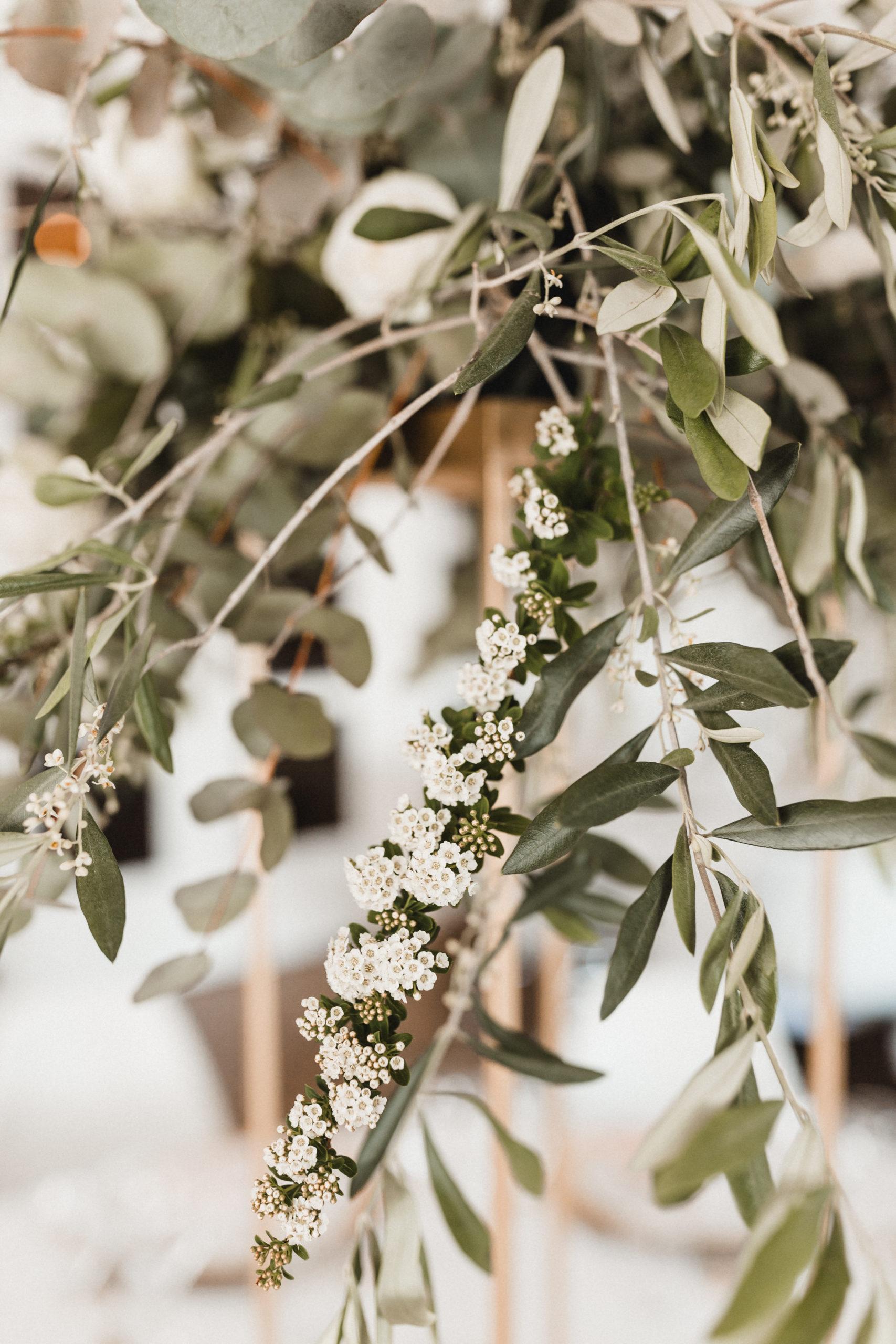 Bei unserer floralen Hochzeitsdekoration im Fokus: Olivenzweige, etwas Eucalyptus, weiße Knospen, Pfingstrosen und Königsprotea